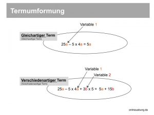 Mathe: Termumformung - gleichartiger Term und verschiedenartiger Term